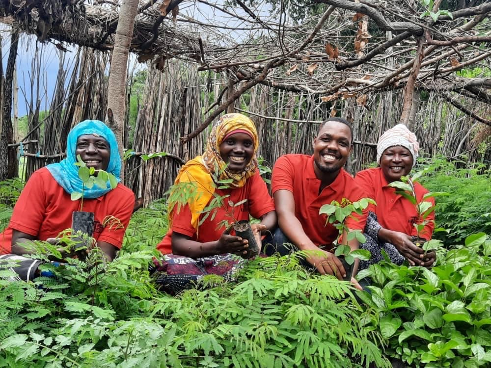 Four workers for Trees For The Future crouching down holding and planting baby trees