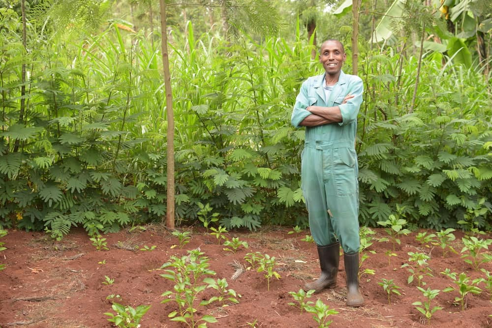 Trees For The Future farmer stood in woodland area surrounded by small growing trees