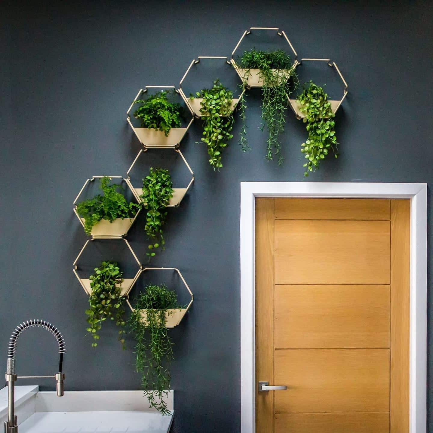 One of Urban B's art pieces which displays several plants in a hexagonal structure trailing across a wall and above a door