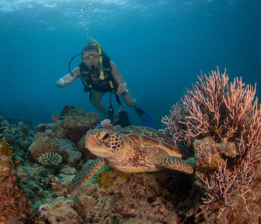 DAYMADE winner, Sam, scuba diving with a turtle